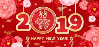 Horóscopo chino 2019